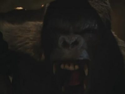 Imagen cabecera de entrada: [Series] Promo de The Flash 5×15: King Shark vs. Gorilla Grodd