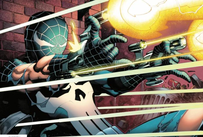 What if Peter Parker Punisher