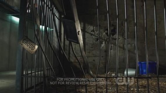 Captura del piloto de The Flash (2014) con referencia a Gorilla Grodd