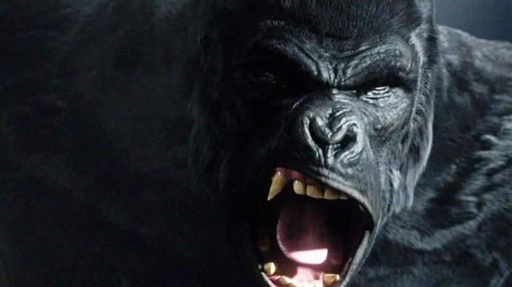 Gorilla Grodd en el episodio The Flash 1x21: Grodd Lives