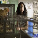 Imagen de Runaways 1x01: Reunion