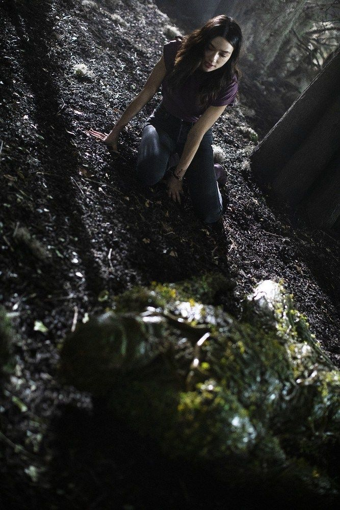 Imagen de Swamp Thing 1x04: Darkness on the Edge of Town